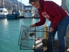 Prince William Sound College instructor Sharry Miller pulls a crab trap during the bioblitz.