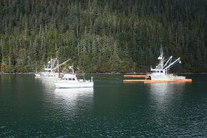 Photo of fishing vessels pulling oil spill boom in formation. If the vessels move too fast, too slow, or get out of proper formation, their efforts to collect oil are not as effective.