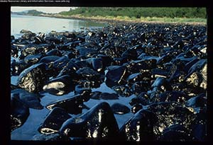Anniversary of the Exxon Valdez oil spill