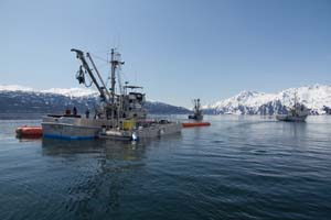 Three boats are shown here in a typical oil recovery formation during the Valdez training. The farthest pictured vessels are pulling the buster system forward. The outstretched legs of the buster collect the oil and direct it into the collection area. The closest vessel manages the skimmer and the transfer of product into the mini barge, tied alongside. Photo by Jeremy Robida.
