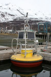 Photo of VMT Buoy in Valdez harbor