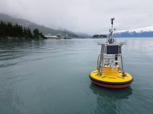 Photo of new buoy deployed in 2019.