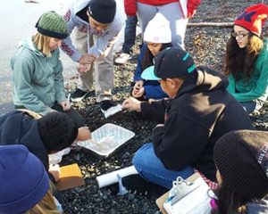 Katie Gavenus (green hat at left) updated the Alaska Oil Spill Curriculum in 2014. Here, she shows Whittier students how oiled water affects bird feathers. Photo by Lisa Matlock.